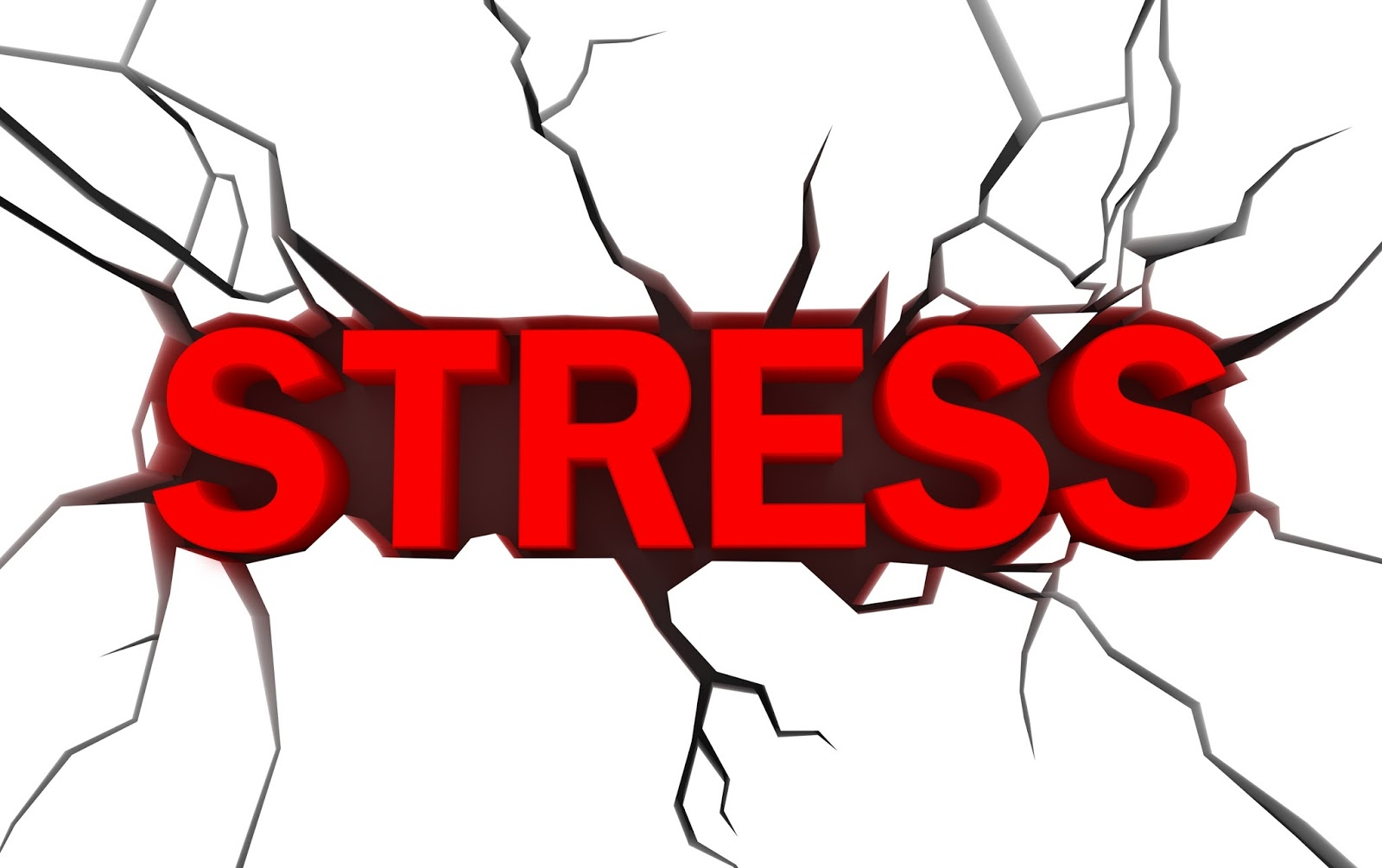 No 1 Work Stressor